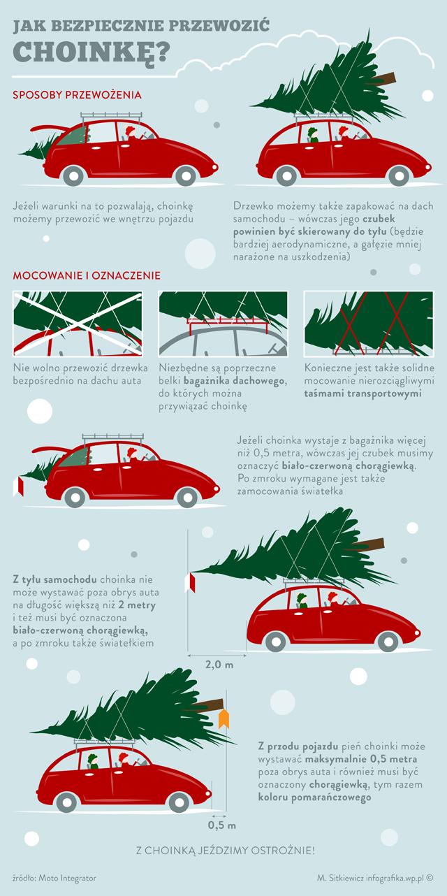 Infografika - Jak bezpiecznie przewieźć choinkę autem?